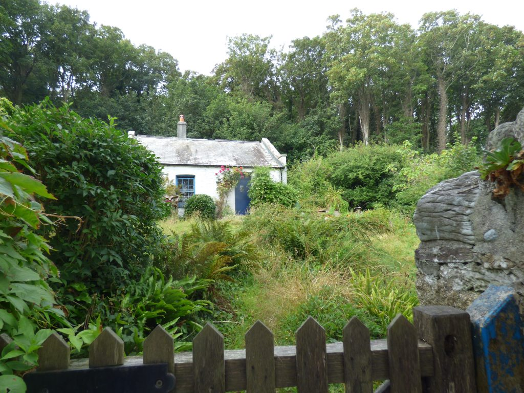 An island haven – Smuggler's Cottage was much more exposed to the elements a couple of centuries ago, but now nestles amongst the trees