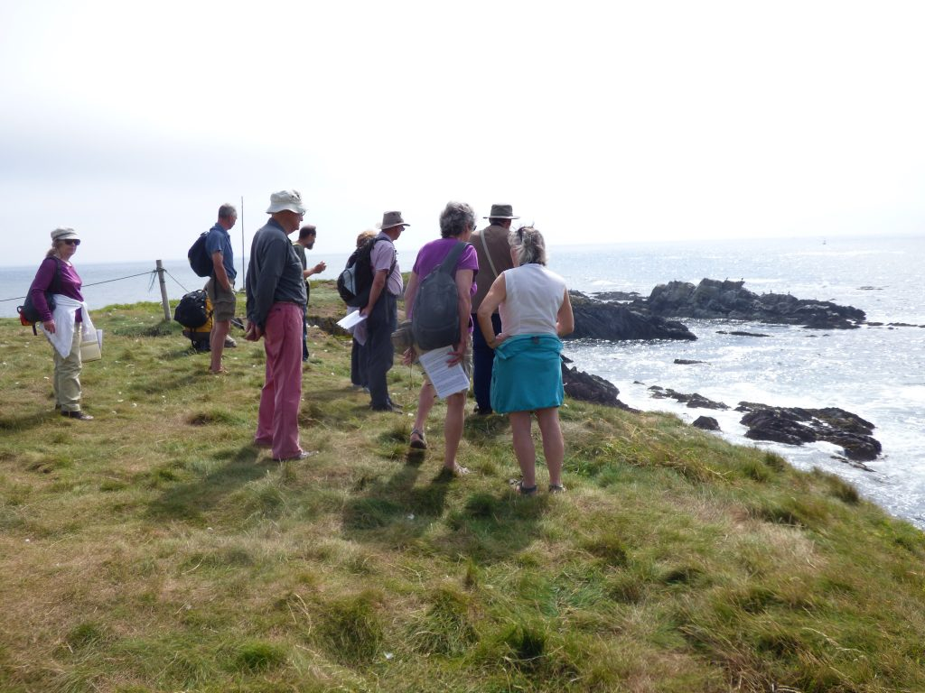 Looking out towards the shags and cormorants on the rocks ....