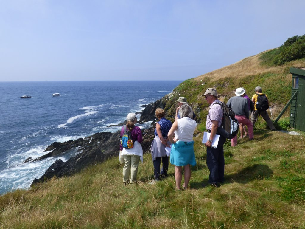 Viewing seabirds on the cliffs below