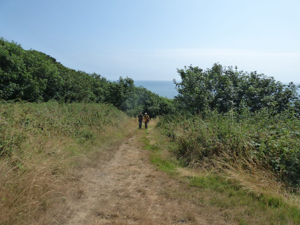 Uphill with sea behind