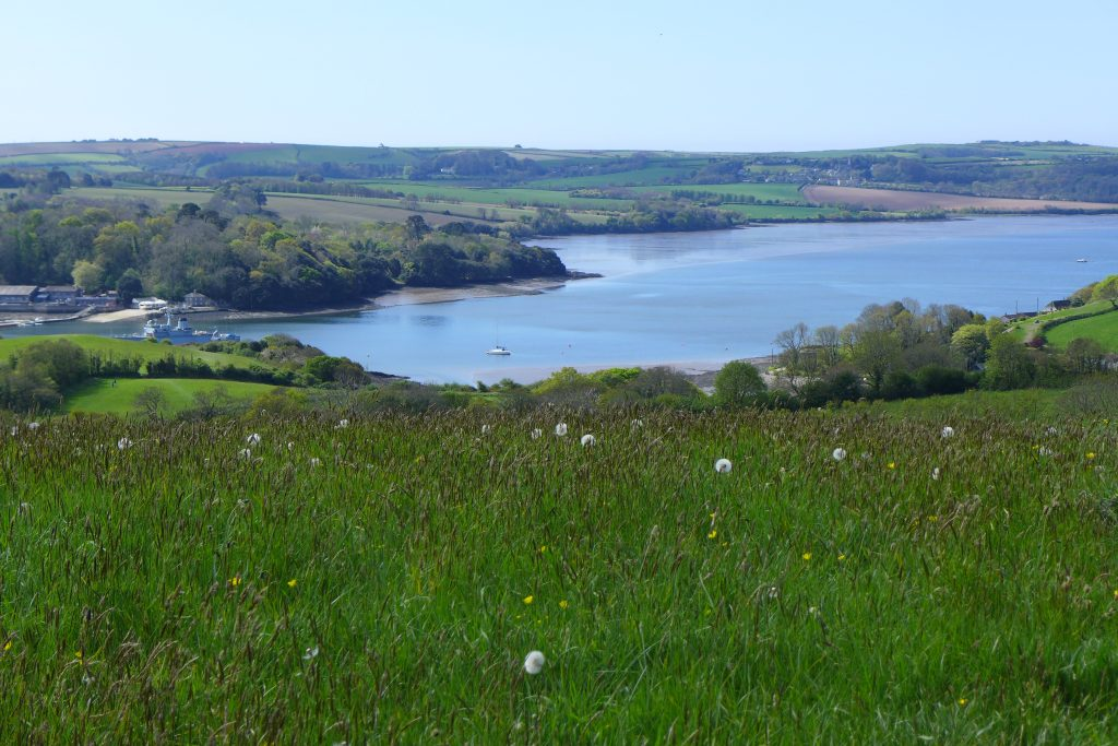 View from the reserve in April