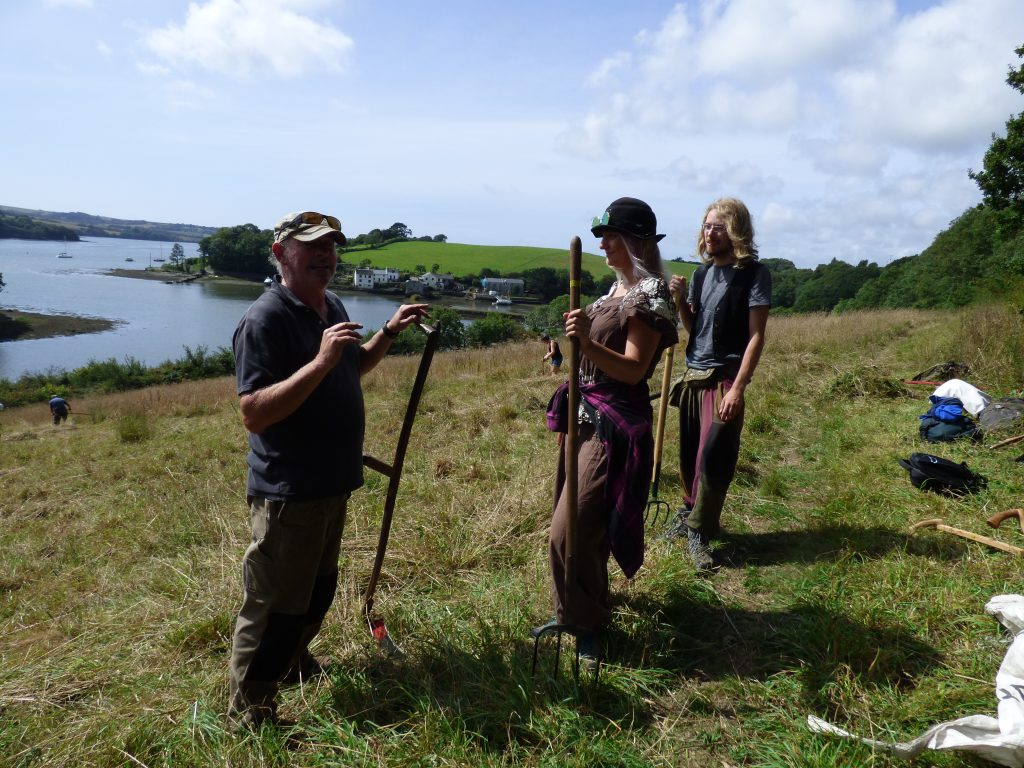 A lesson on scythes and scything for the newcomers
