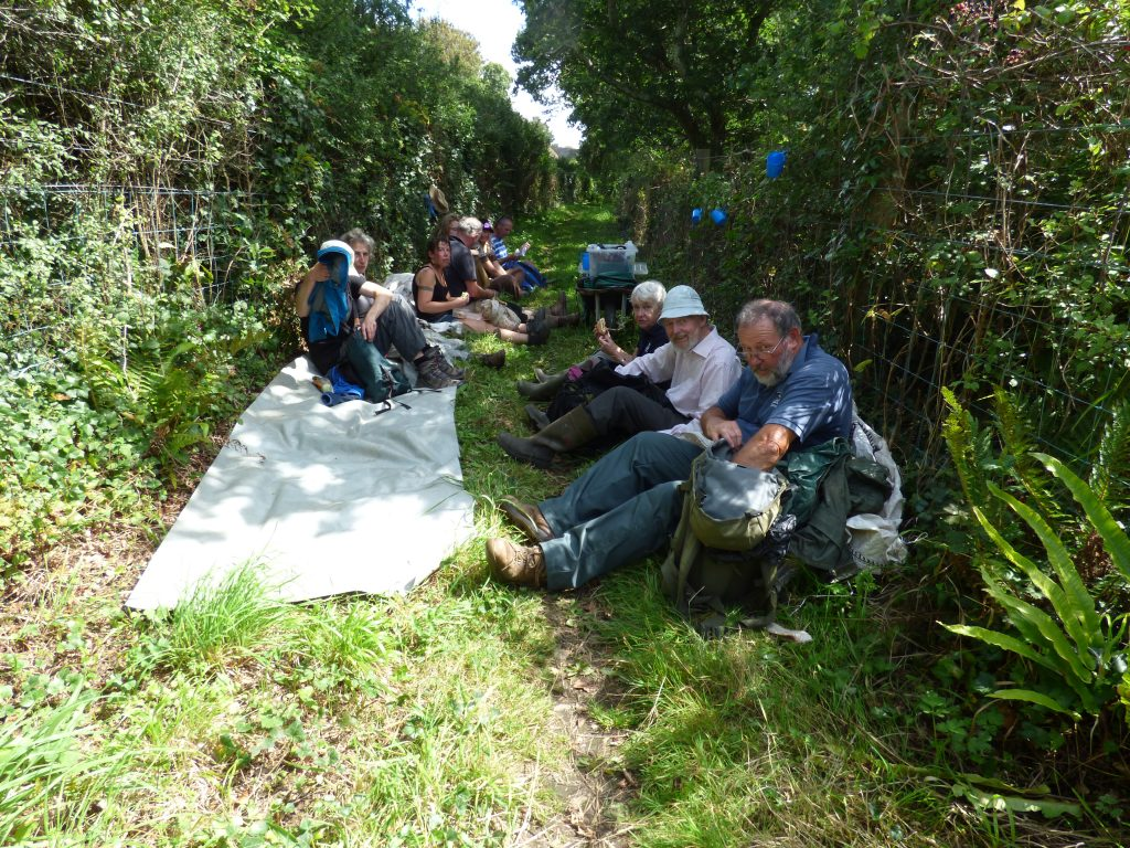 Lunch break for the hay harvesters – a chance for a good chat