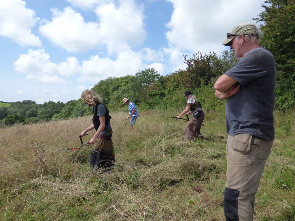 Learning to scythe under the watchful eye of David May