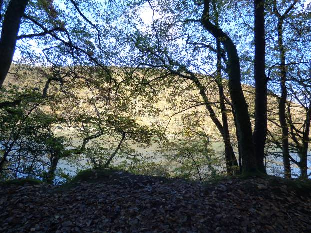 View across to Trenant