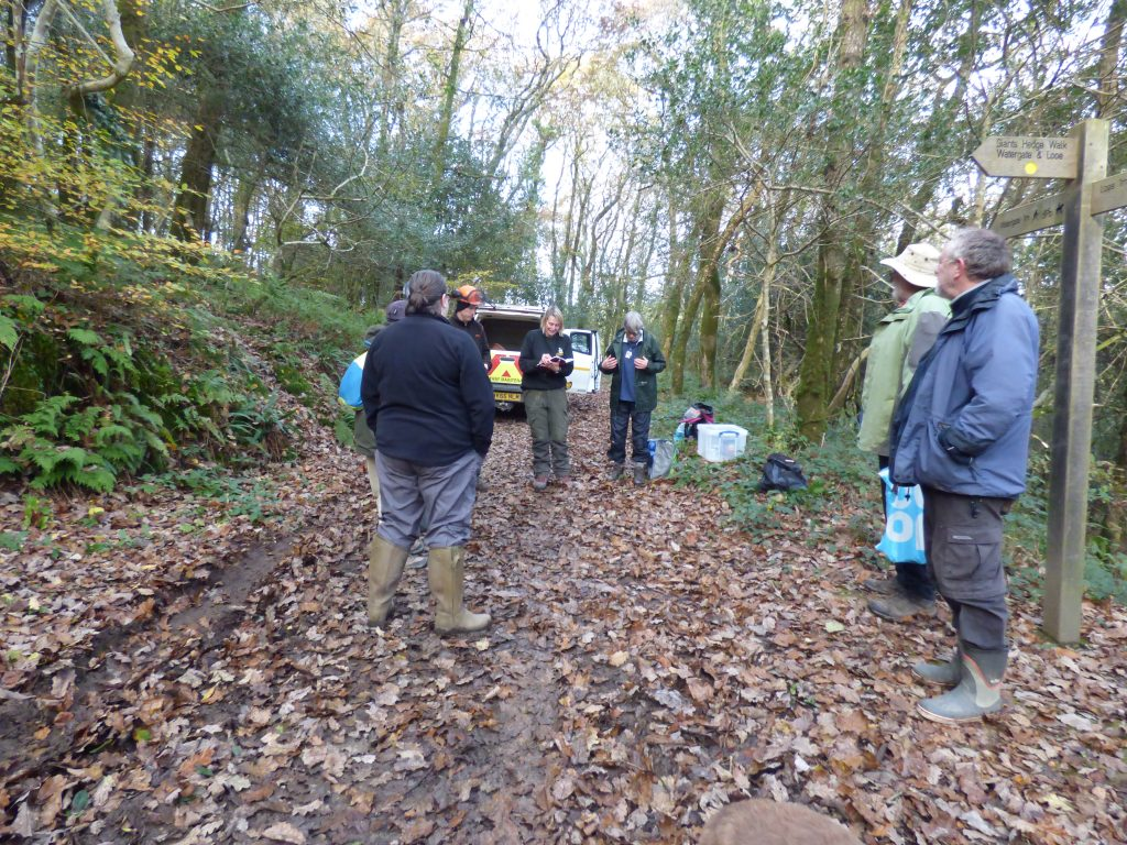 Register and notes, Kilminorth coppicing day