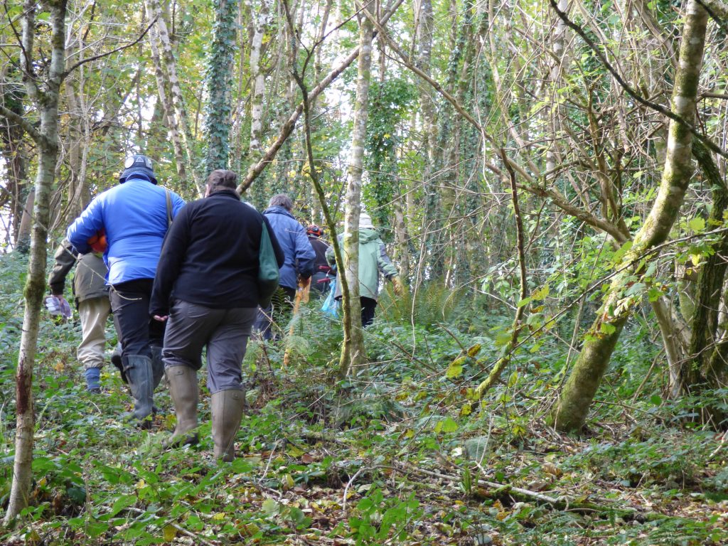 On our way to the coppice site