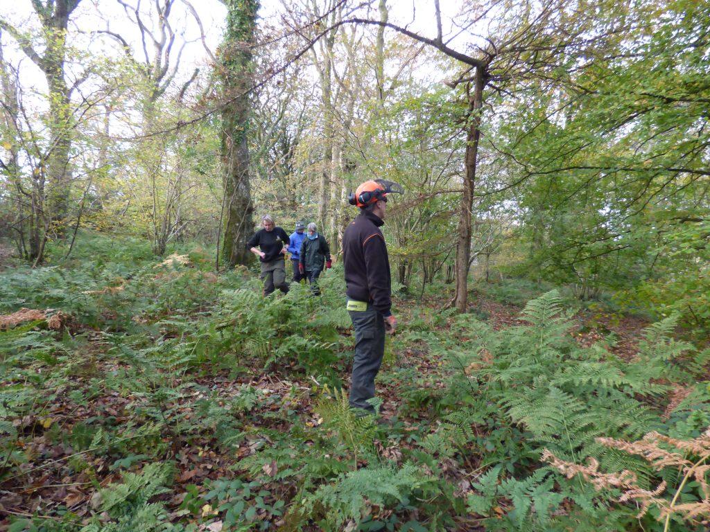 Surveying the site, Kilminorth