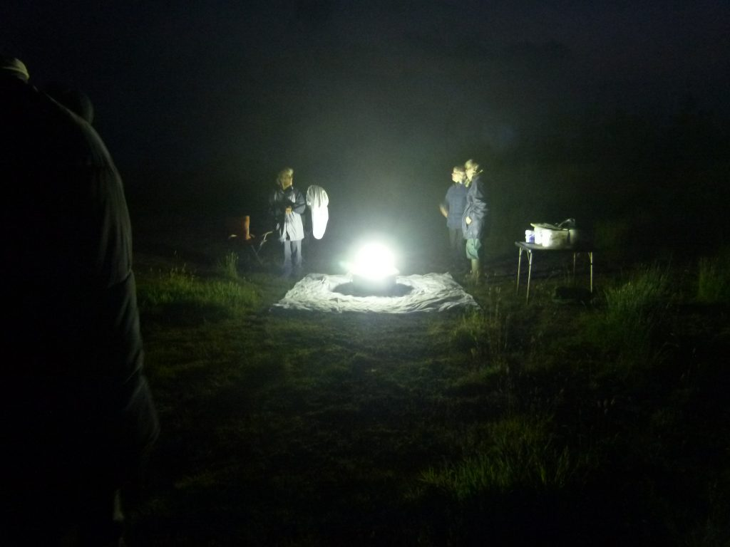 Attracting moths with a lamp at a site in East Cornwall © Jen Bousfield