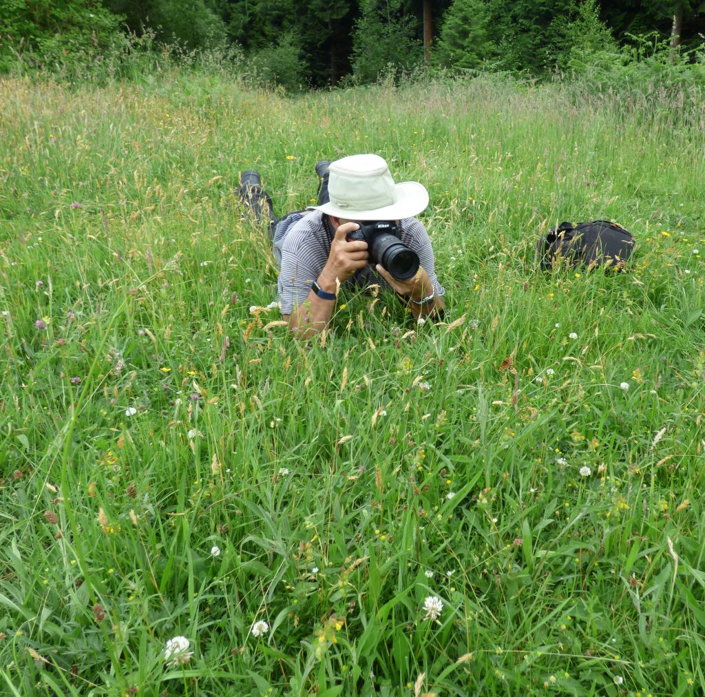A Wildlife Group member photographing the rare Heath Fritillary butterfly in a meadow in east Cornwall © Rowena Millar