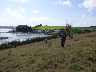 David removing the cut hay from the field – an essential job