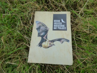 Devon Horseshoe Bat project leaflet