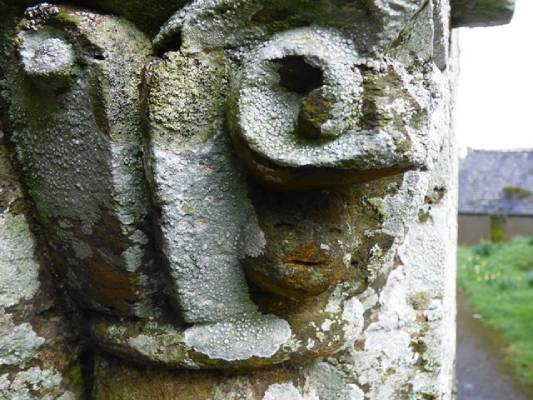 A face hidden amongst the lichen-encrusted carvings