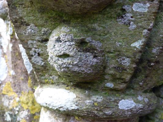 Lichen encrusted small carved face