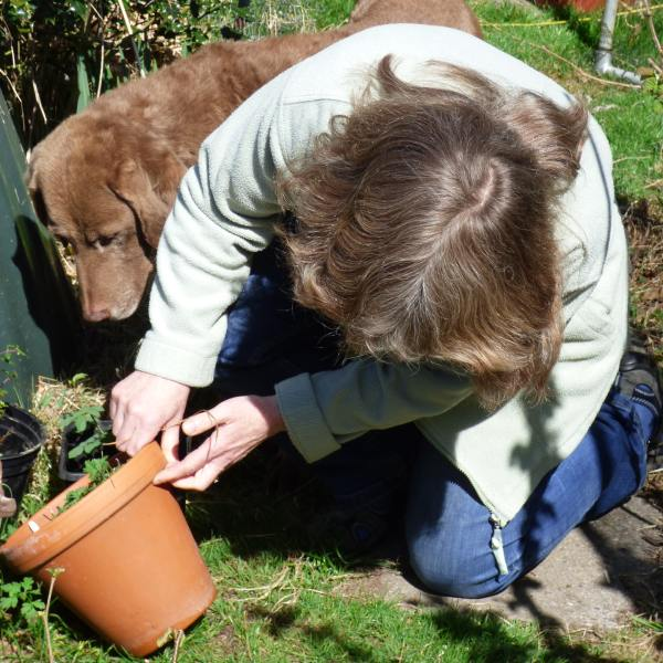 Author and her dog looking under a flowrpot