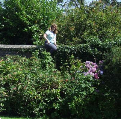 Rowena on garden wall