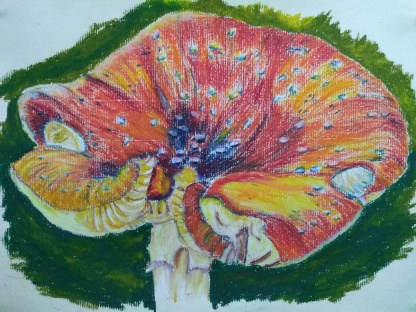 Fungal art – Fly Agaric by Gill Naylor